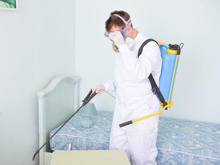 شركة مكافحة حشرات بالدمام 0500806539 رش مبيدات و حشرات و الصراصير بالدمام