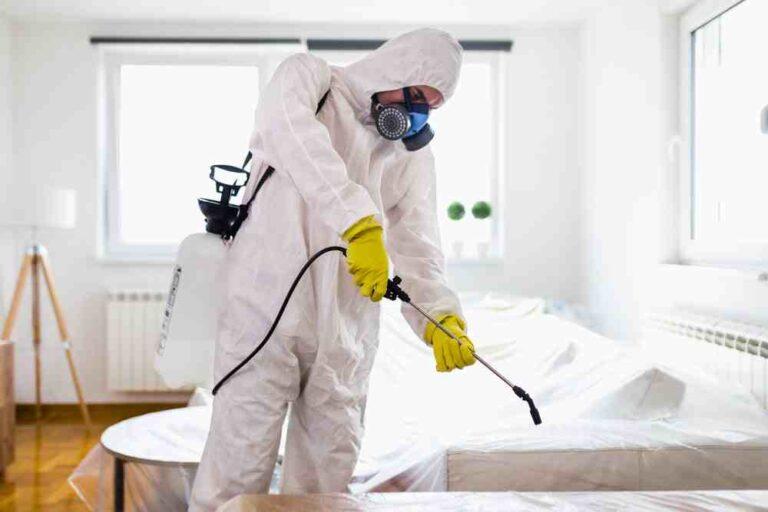 شركة مكافحة حشرات بعنيزة 0500806539 رش حشرات و مبيدات بعنيزة